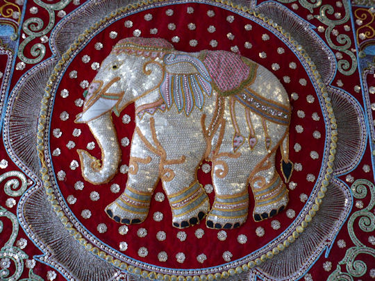 Finest Thai Elephant